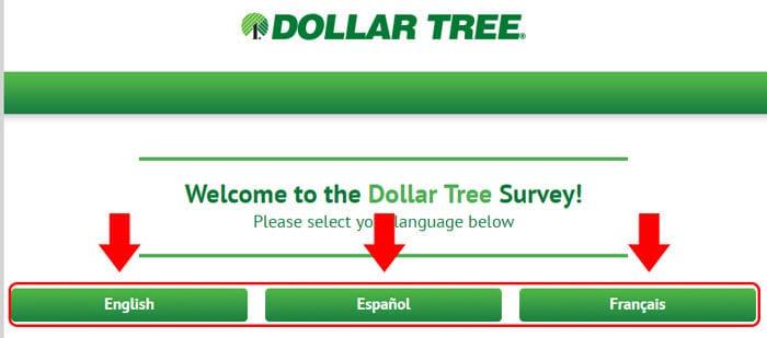 Dollartreefeedback Survey 2021 Review